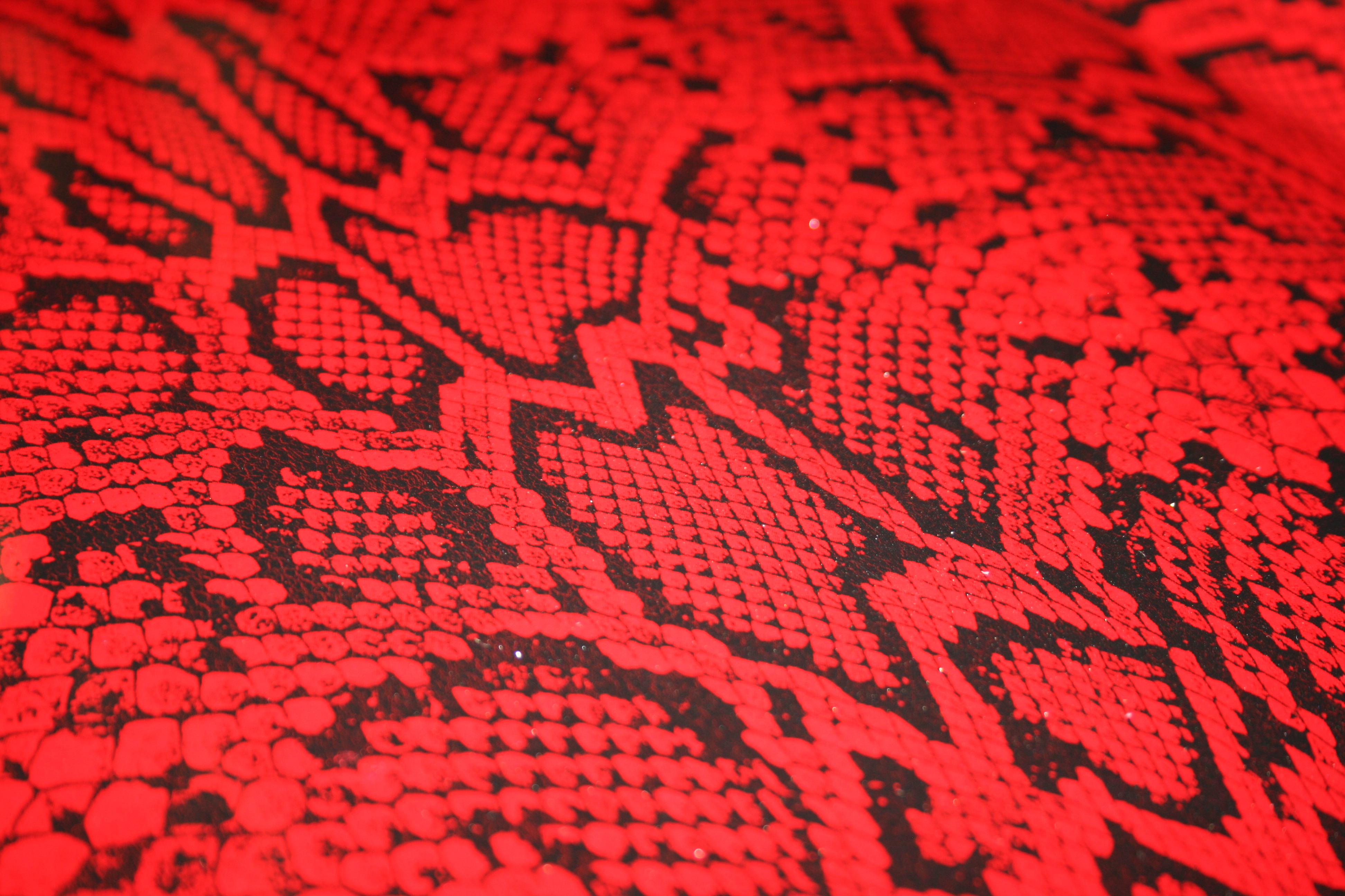 Coral Pattern Red Snake Skin Azhydrographics Com